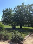 Camping Maisonneuve View